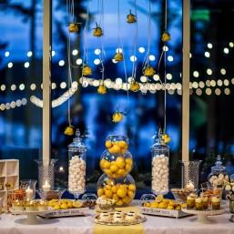 Lemon saldus stalas (3)